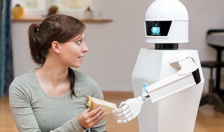 Consumer robot