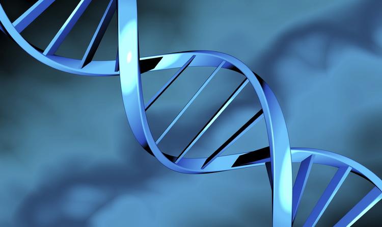 Gensequenzierung