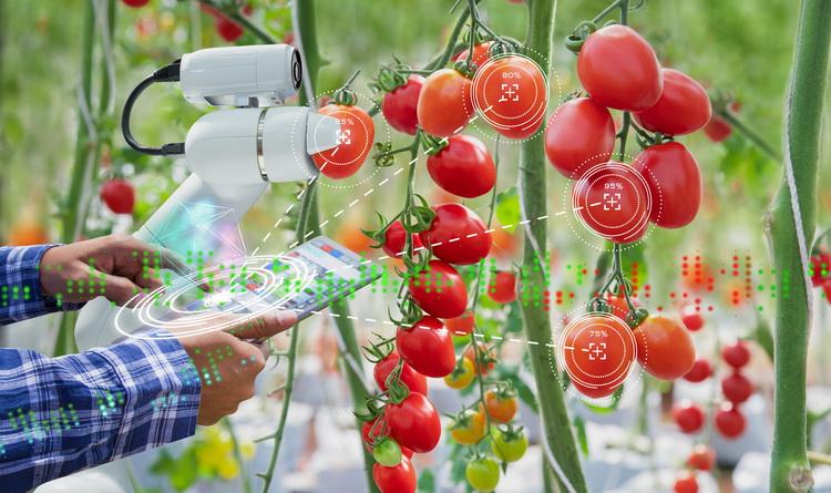 Roboter Landwirtschaft