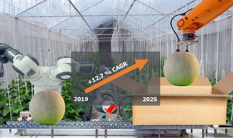 Roboter Lebensmittelindustrie