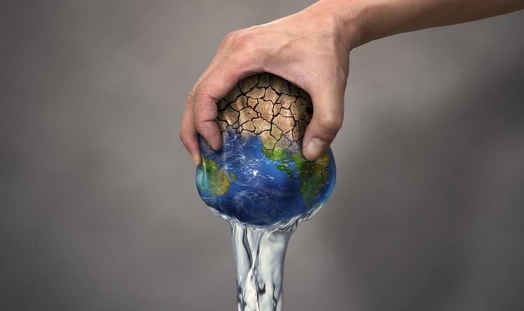 Wasserbedarf
